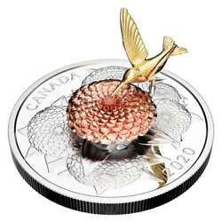 5 Oz. Pure Silver Coin - The Hummingbird And The Bloom - Mintage 1,250 2020