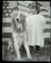 Old Amateur Photo Glass Plate Negative-little Girl- Dog- 1910 Or So