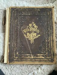1860 Wild Flowers Book London New York Rare And Vintage By- Mrs.badger C. 1858