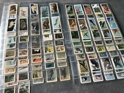 Brooke Bond Usa Card Collection X 273 Diff From Most Series