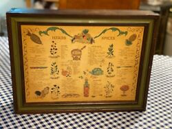 Vintage Three Mountains 1970 Wooden Herbs And Spice Cabinet/rack