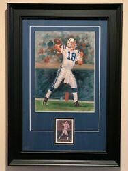 Upper Deck Peyton Manning 1/1, Very Rare ,one Of A Kind Original Oil Painting