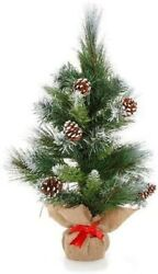 Miniature Christmas Holiday Mini Glacier Tree + Pinecones Height 12 Inches New