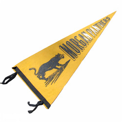 Vintage Pennant Morgan Parlin Panthers Gold Black Fan Flag New Jersey 11 X 28.5