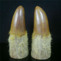 9.45 China Old Antique Hand Carved Ox Horn Tip Statues Collection Ornament Pair