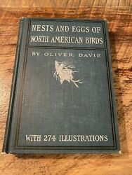 Rare Antique Illustrated Bird Nest And Eggs Of North America Book By Davie 1900
