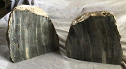 Book Ends Petrified Wood Black And Gray 17 Lbs. 6 1/2 In. Tall 7 In. Wide