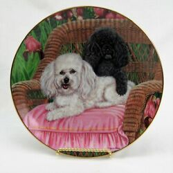 Vintage Danbury Mint Collector Plate Salt And Pepper Poodle Limited Edition