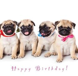 Birthday Card Dogs amp; Puppy designs Ideal for Mum Wife Sister Daughter Nanny