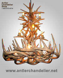 Reproduction Antler Whitetail Tall Spruce Deer Chandelier, Rustic Lamps, Crl-31