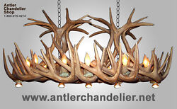 Reproduction Antler Whitetail Deer Chandelier Optional Downlights Lampscrl-28