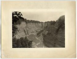 BW PHOTO LANDSCAPE POSSIBLY COLORADO RIVER GRAND CANYON WATER ROCK WALL TREES
