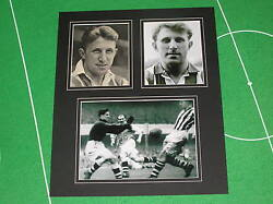 Ray Barlow Signed Vintage West Bromwich Albion Wba Fc Mount