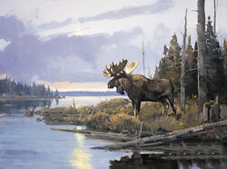 A Distant Rival By Luke Frazier Bull Moose Animals Sn Le Wildlife Print On Paper