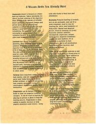 Book Of Shadows Spell Pages 8 Wiccan Herbs Wicca Witchcraft Bos