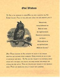 Book Of Shadows Spell Pages Owl Wisdom Wicca Witchcraft Bos
