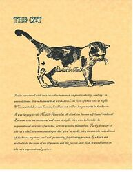 Book Of Shadows Spell Pages The Cat Wicca Witchcraft Bos