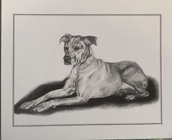 quot;Cleoquot; A Boxer Mix Dog An original print from the artist me