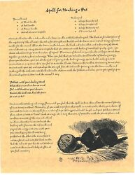 Book Of Shadows Spell Pages Spell To Heal A Pet Wicca Witchcraft Bos