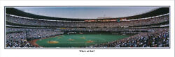 Cincinnati Reds Cinergy Field Whoand039s At Bat Mcgwire Panoramic Poster 2006