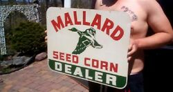 Vintage Mallard Duck Seed Corn Dealer Sign Farm Cow Pig Swine Chicken Horse