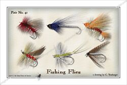 Trout,flies,fly,fishing,fish,angler,lure,reel,salmon,river,creek With Fly