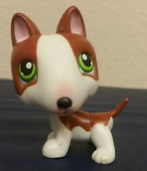 Littlest Pet Shop #154 brown & white bull terrier dog with green eyes