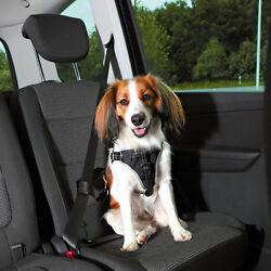 Dog Car Comfort Harness suitable for all cars also be used for walks reflective