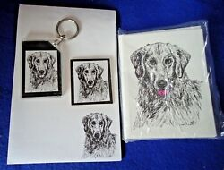 Golden Retriever 4 Pc Set-notepad, 6 Blank Notecards, Keychain And Magnet New