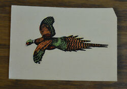 Original Vintage Water Decal Pheasant Bird Watching Design Hunting South Dakota