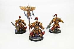Warhammer 40k Army Commission Adeptus Custodes Pro-painted