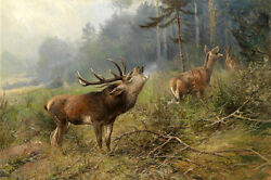 Wholesale Oil Painting Wild Animals Deer Calling Companion In Fores Hand Painted
