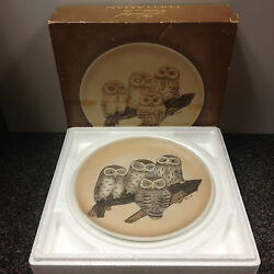 Fred Aman Baby Saw-whet Owls Porcelain Bisque Plate Free Shipping