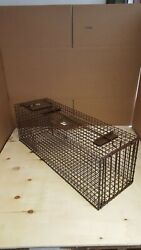 Live Cage Trap Great For Raccoon-opossum-skunk-armadillo-fox. Made In Usa Ztrap