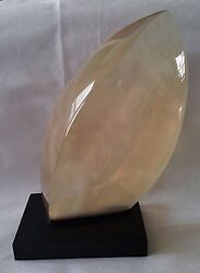 Ric Snead Mid Century Polymer Resin Sculpture Title Andlsquofisc Andlsquo Viv 1988