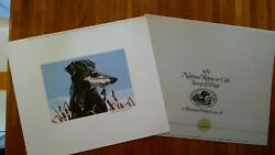 1982 National Retriever Club Stamp And Print By Thompson Philip Growe Iv