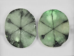 Igi Certified Colombia Trapiche Emeralds 20.59 Cts Natural Light Green