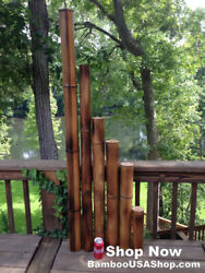 Lot Of 2 Large 2.5diam. Moso Flame Cured Bamboo Poles-indoor/outdoor Decor