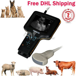 Gdf-w2 Veterinary Ultrasound Scanner W/3.5mhz Convex Probe For Sow/sheep/pets