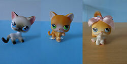 Littlest Pet Shop LPS #5 #11 #42 Cat Short Real Hair Lot 2004 RARE First 50 LPS