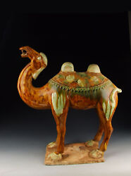 Chinese Antique Tri-colored Pottery Camel Statue