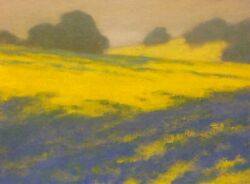 California Gold Poppies Wildflowers Landscape Art Oil Painting Impressionism New