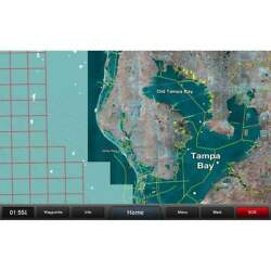 Garmin Standard Mapping Florida West Pen Professional 010-c1203-00