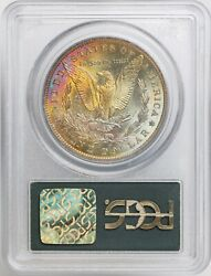 1885-o Silver Morgan Dollar Toned Ms65 Pcgs Ogh Attractive Rainbow Toning Cac
