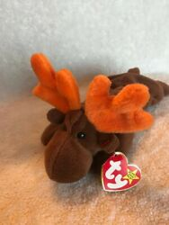 1993 Ty Male Moose Chocolate Beanie Baby. Style 4015. Rare With Errors.