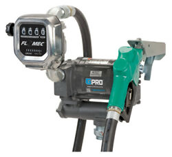 Gpro Pro20-115ad/qm240g8n 115 Volt Pump And Meter With Auto Nozzle