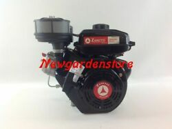 Engine Complete Cultivator Zanetti Diesel Zdx230l2 Cylindrical Avv. Manual