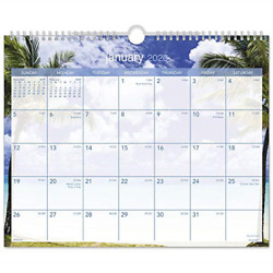AT-A-GLANCE 2020 Monthly Wall Calendar 15