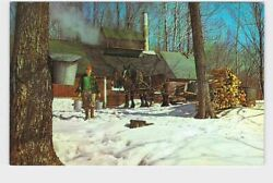 Ppc Postcard Vermont Maple Sugar Time Man With Buckets And Horses