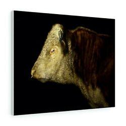 Hereford Bull Canvas Print / Poster Painting By David Andrews Cow Art